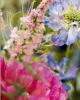 fiori_02